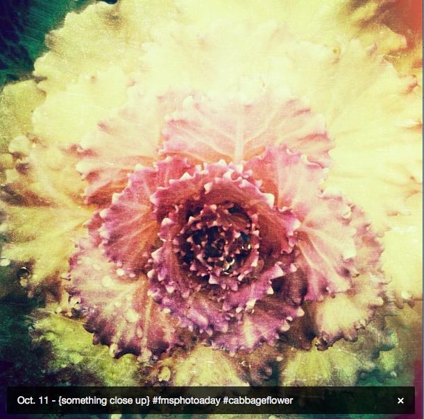 Screen Shot 2012-10-15 at 2.49.31 PM